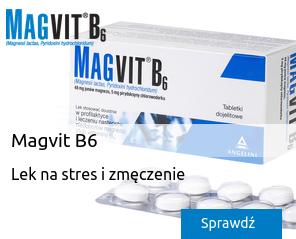 magvit4